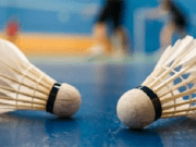 Badminton - Volante